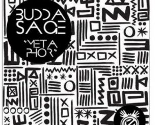Budda Sage – Metaphor