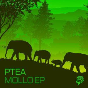 EP: PTea – Mollo