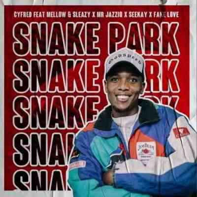 Cyfred, Mellow, Sleazy & SeeKay – Snake Park Ft. Mr JazziQ & Fake Love