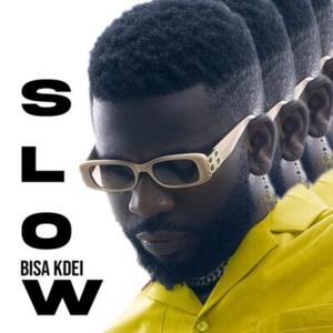 Bisa Kdei – Slow