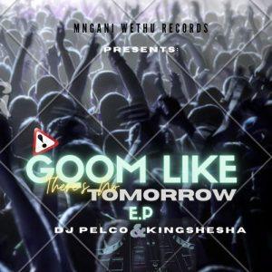 Album: Dj Pelco & Kingshesha – Gqom Like There's No Tomorrow